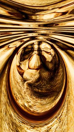 """""""Mandala Fauna"""" Image # BG06"""