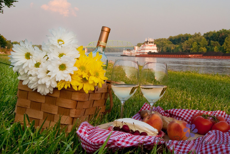 Ohio River picnic