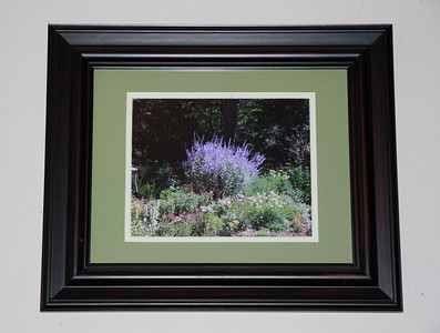 Matted & Framed Photographs