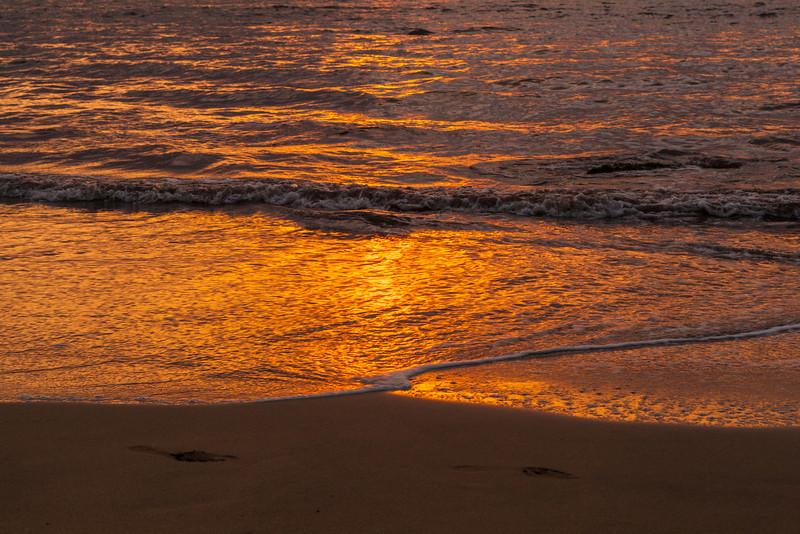 'Sunset Gold'