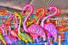 'Flamingoes'