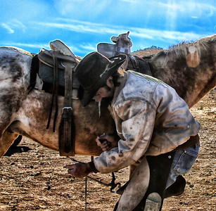 West Texas Farrier Rachael Waller Photography