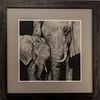 SRb1612_8043_MillieArt_Elephants