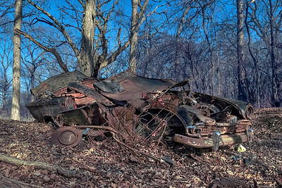 Junked Car in Forest Preserve
