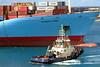 Giant Ship Spo\ins like  top