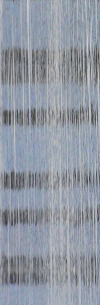 """Vertical Chords"", 2011"
