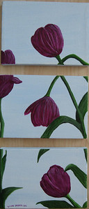 Triptych of purple tulips