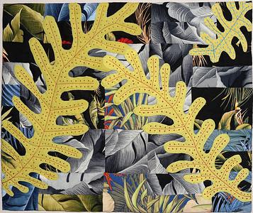Kauai Ferns  -  Pat Scoville