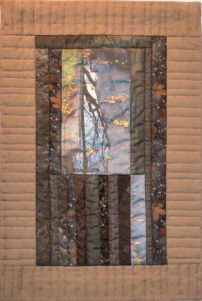 Rainwater Reflection-Branch - Gina Stateler-Calhoun