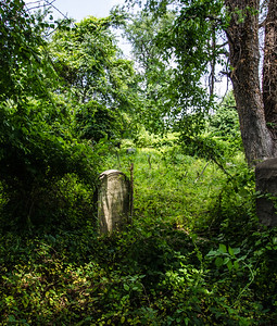 In the front area of the cemetery where newer graves were the volunteers seemed to be making some effort to maintain the grounds, but farther back in the cemetery where the older graves were has been completely abandoned and has become almost entirely overgrown.