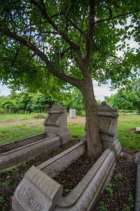Some of the gravesites had what appeared to be little gardens over them where you could grow flowers. Or in this case, a tree.
