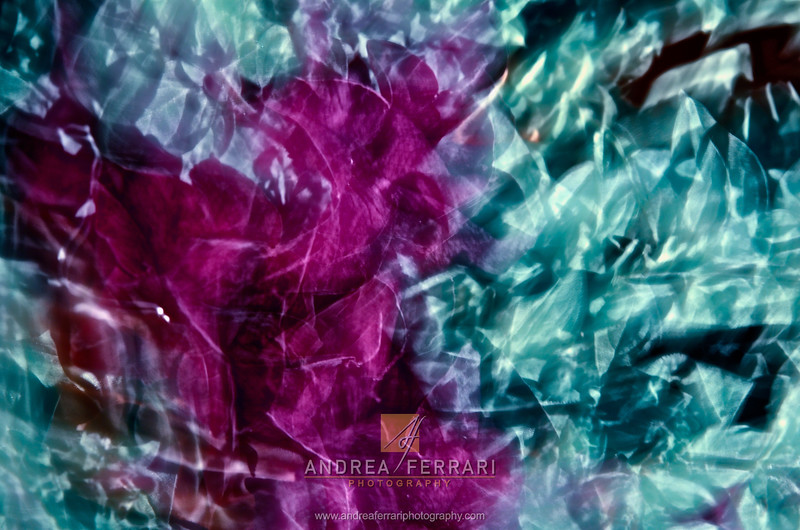 Crystal flowers 1