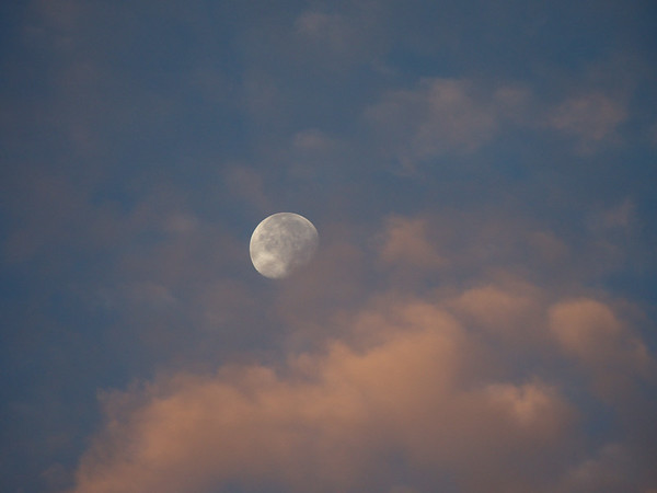 Super Moon in Pink