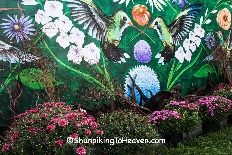 Mums and Hummingbird Mural, Village Greenhouse, Gays Mills, Wisconsin