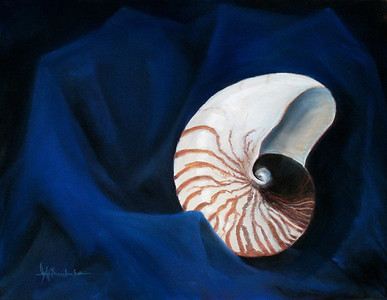 "Chambered Nautilus 19""x25"" Soft Pastel on Sand Paper"
