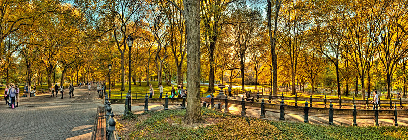 Autumn in the Park<br /> Canvas wraps available in sizes from 10x30 - 20x60