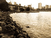 Downtown Brooklyn Photography