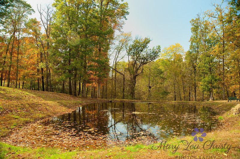 West Virginia pond in fall.