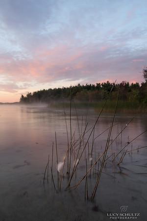 Goosefeathers at Dawn