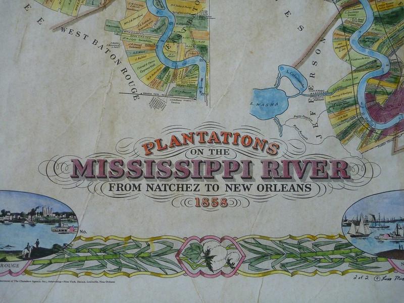 plate 1, plantation detail