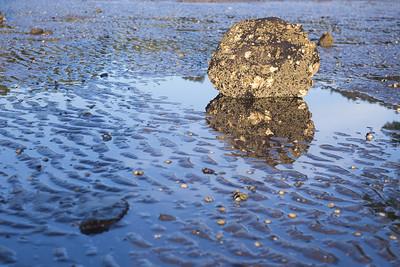 NZA-19 Tidal Rock