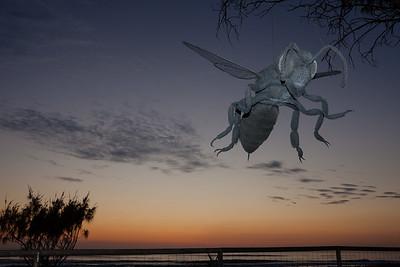 Macro, Ivan Lovatt - Swell Sculpture Festival 2012, Dawn Visit; Currumbin, Gold Coast, Queensland, Australia; 21 September 2012. Photos by Des Thureson.