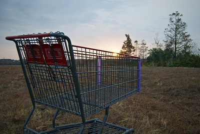 Shopping Cart in Sunrise