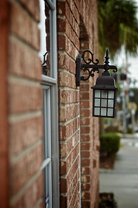 Let there be light! // Mount Dora, FL //