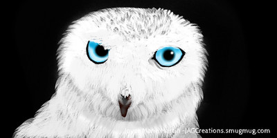 snowow1l