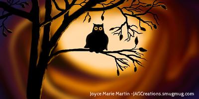Owl Awake
