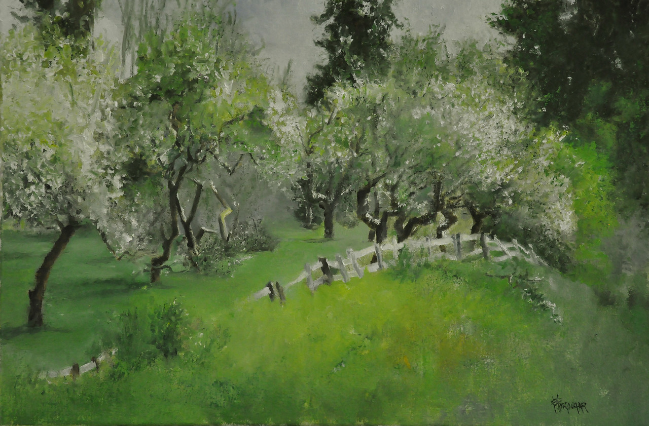 SOLD; Orchard in Bloom, May, Yelm WA Oil on Canvas 15X20  Settled in wind Left behind Broken trees and scattered branches that Broke the monotony of the rows of apple trees Curving up the hill
