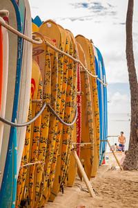 20140129_Honolulu-69