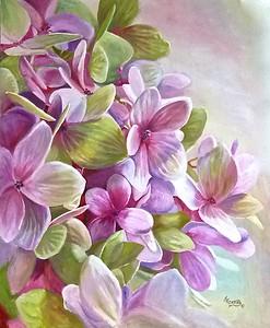 """""""Hydrangia Blossoms"""""""