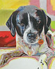 """Lola - 2014"" Original Oil on Canvas  16"" x 20""   Gift"