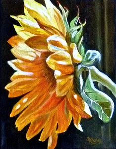 """Sunflower Series 1"""