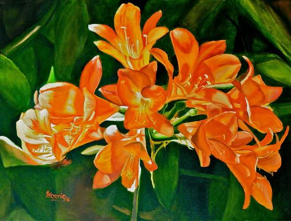 """""""Here Comes Spring""""  (Clivia Miniata)"""