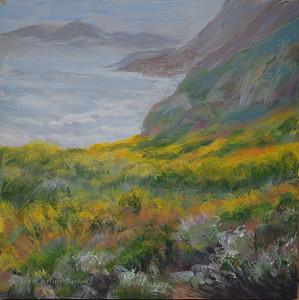 Wild Flowers at Mussel Rock Overlook
