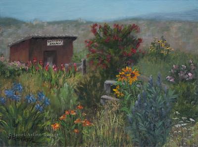 Community Garden-Potrero Hill
