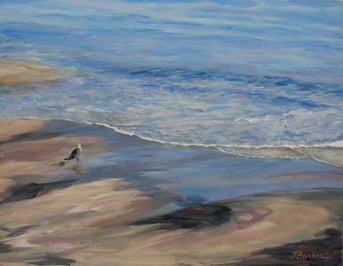 Sun-seagul-sunshine-the sea and me