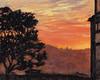 Sunset Tree from Potrero Hill Community Garden