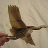 Kamiya's crane