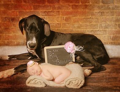 AVA ~ Newborn