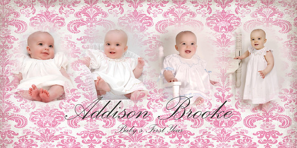 ADDISON AND EMMA ~ Baby Panel