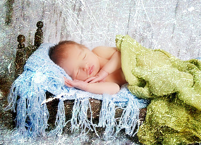 EVAN ~ Newborn