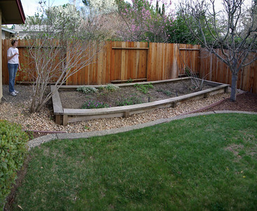 A view of our backyard (4 shots)