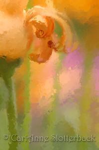 paint_0080