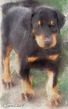 Viktor's Brother..Digital Painting from my photo