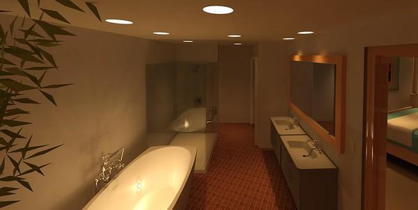 Aleck's-Guest Bath