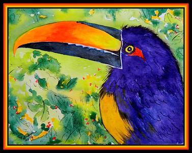 1-Fiery-billed Aracari #2, 5.5x7, watercolor & ink, oct 23, 2019.