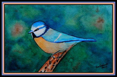 1-Eurasian Blue Tit, 140x215mm, watercolor, acrylic, ink, nov 2, 2018.